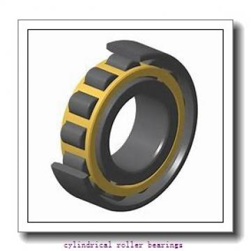 40 mm x 80 mm x 23 mm  FAG NJ2208-E-TVP2  Cylindrical Roller Bearings