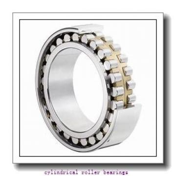 1.575 Inch | 40 Millimeter x 2.677 Inch | 68 Millimeter x 1.496 Inch | 38 Millimeter  INA SL045008-PP-2NR  Cylindrical Roller Bearings