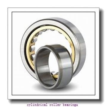 FAG NJ308-E-M1  Cylindrical Roller Bearings