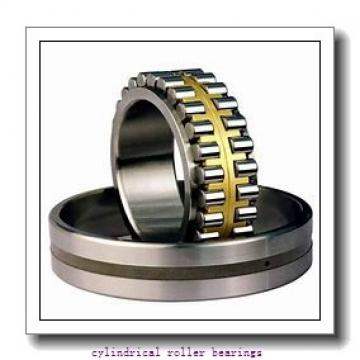 FAG NJ2210-E-M1A-C4  Cylindrical Roller Bearings