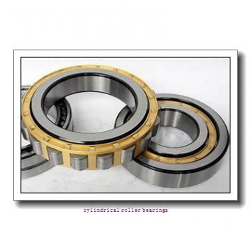 95 mm x 200 mm x 45 mm  FAG NU319-E-TVP2  Cylindrical Roller Bearings